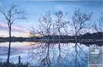 Image of artwork Sunset over Wyaralong